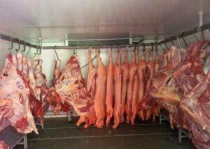 Камера для охлаждения мяса