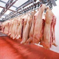 Охлаждение мяса в полутушах