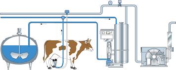 Охлаждение молока