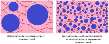 Влияние шоковой заморозки на мясо