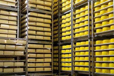 Камера для сыров