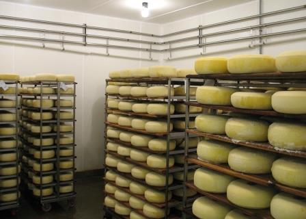 Холодильная камера для сыра