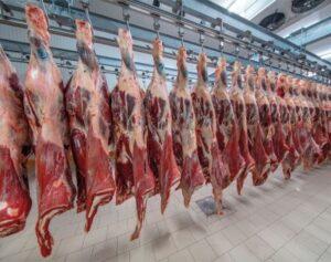 Холодильное хранение мяса