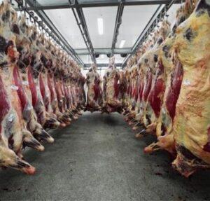 Хранение свежего мяса